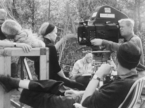 an analysis of persona by bergman In 1963 ingmar bergman was appointed head of the royal dramatic theater in stockholm refusing to cut back on his filmmaking projects, exhausted and stressed.