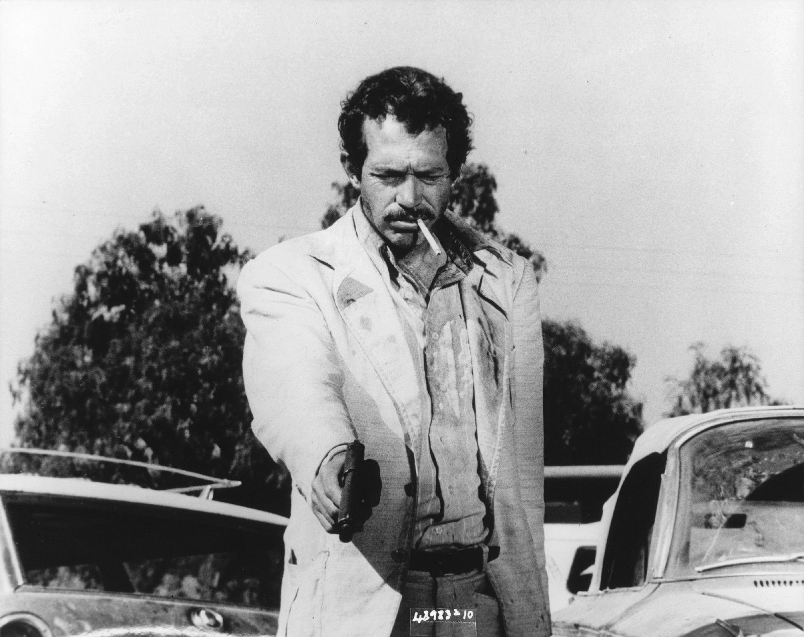 Disciples of sam part 1 the corporate sucker every face array bring me the head of alfredo garcia u0027 the story of the great sam fandeluxe Image collections